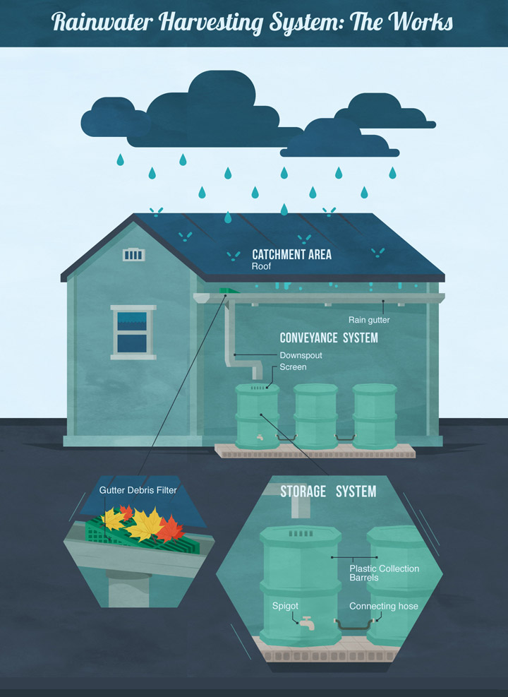 Rainwater Harvesting A Water Efficient Model Vegua